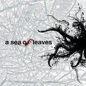 A Sea Of Leaves Songs