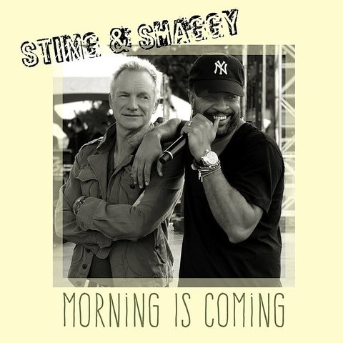 Morning Is Coming Songs Download: Sting and Shaggy Morning