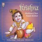 Madhukar shyam hamare chor Song