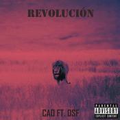 Revolución Song