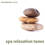 Spa Relaxation Tunes Songs