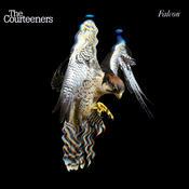 Falcon Songs
