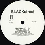 No Diggity Song
