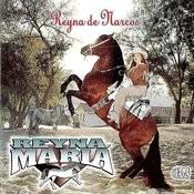 Reyna De Narcos Songs