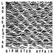 Dissected Affair Song