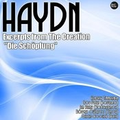 Haydn: Excerpts From The Creation