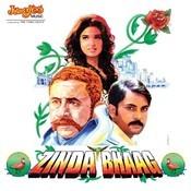 Zinda Bhaag Songs