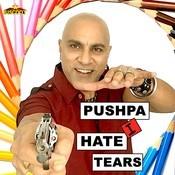 Pushpa I Hate Tears Songs