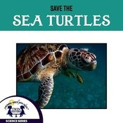 Save The Sea Turtles Songs