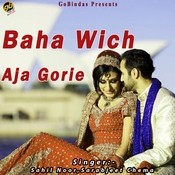 Baha Wich Aja Gorie Songs