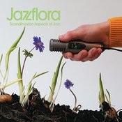 Jazzflora Songs