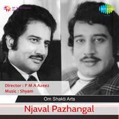Njaval Pazhangal Songs