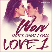 Wow! That'S What I Call Love 1 Songs