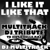 I Like It Like That (Multitrack Dj Tribute To Hot Chelle Rae) Songs