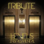 Levels (Avicii Instrumental Tribute) - Single Songs