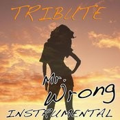 Mr. Wrong (Mary J. Blige Feat. Drake Instrumental Tribute) Song