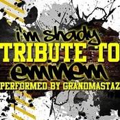 I'm Shady: Tribute To Eminem Songs