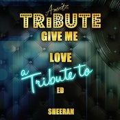Give Me Love (A Tribute To Ed Sheeran) - Single Songs