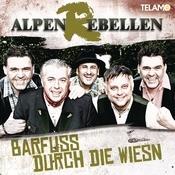 Barfuss Durch Die Wiesn Songs