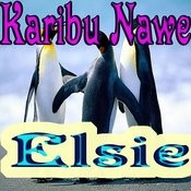 Karibu Nawe Songs