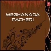 Paida Bhitare Pani Song