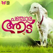 Changaathi Nannaayaal Song