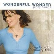 Wonderful Wonder (Single) Songs