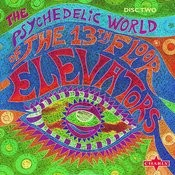 The Psychedelic World Of The 13th Floor Elevators, Vol.2 Songs