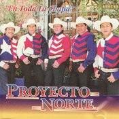Gorrioncillo Pecho Amarillo Song