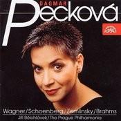 Song Recital /Wagner-Schoenberg-Zemlinsky-Brahms/ Songs