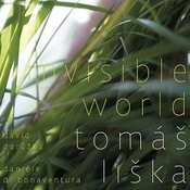 Invisible World Songs