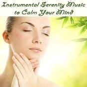Instrumental Serenity Music To Calm Your Mind Songs