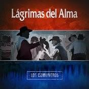 Lágrimas Del Alma Songs