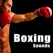 Boxing Sound Effects Songs