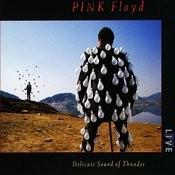 Comfortably Numb (Live) MP3 Song Download- Delicate Sound of