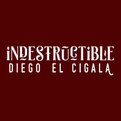 Indestructible Songs
