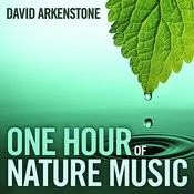 One Hour Of Nature Music: For Massage, Yoga And Relaxation Songs