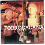 O Acaso (Album Version) Song