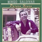 Pajaro Negro Songs