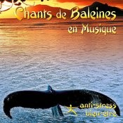 Chants De Baleines En Musique Songs