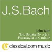 Johann Sebastian Bach, Trio Sonata No. 3 In D Minor, BWV 527 Songs