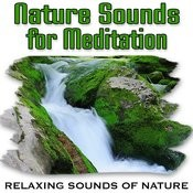 Powerful Waterfall Promotes Deep Sleep Song