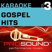 In The Garden (Karaoke Lead Vocal Demo)[In The Style Of Gospel] Song