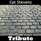 Wild World: Tribute To Cat Stevens Songs