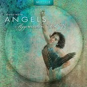 Meritage Healing: Angels (Appreciation), Vol. 15 Songs