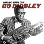 Who Do You Love Song