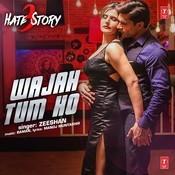 Wajah Tum Ho Song
