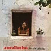 Cintura Fina (Album Version) Song