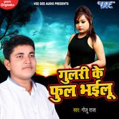 Gulari Ke Phool Bhailu Song