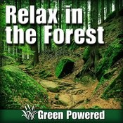 Relaxing Nature Sounds of Daytime Forest Creatures Song